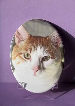 porcelain-photo-pet-memorial
